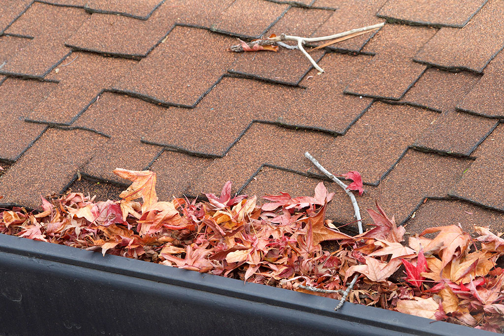 Inspect your roof and clean your gutters.